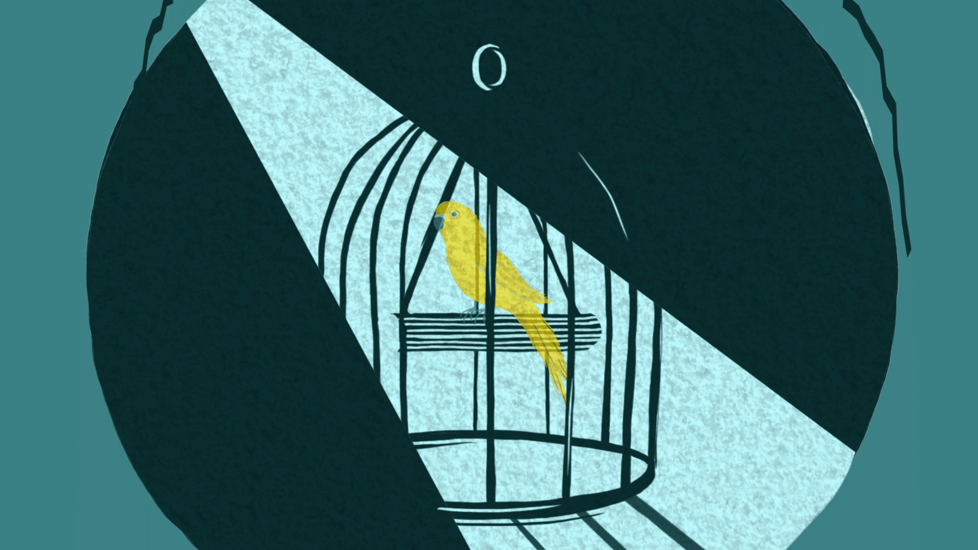 branded content videos - bird in a cage
