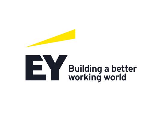 ey colour logo